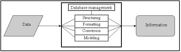 Figure 1. Transformation of data into information
